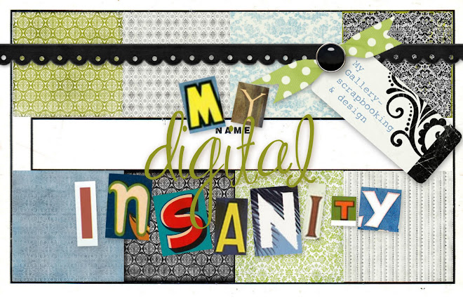 my digital insanity
