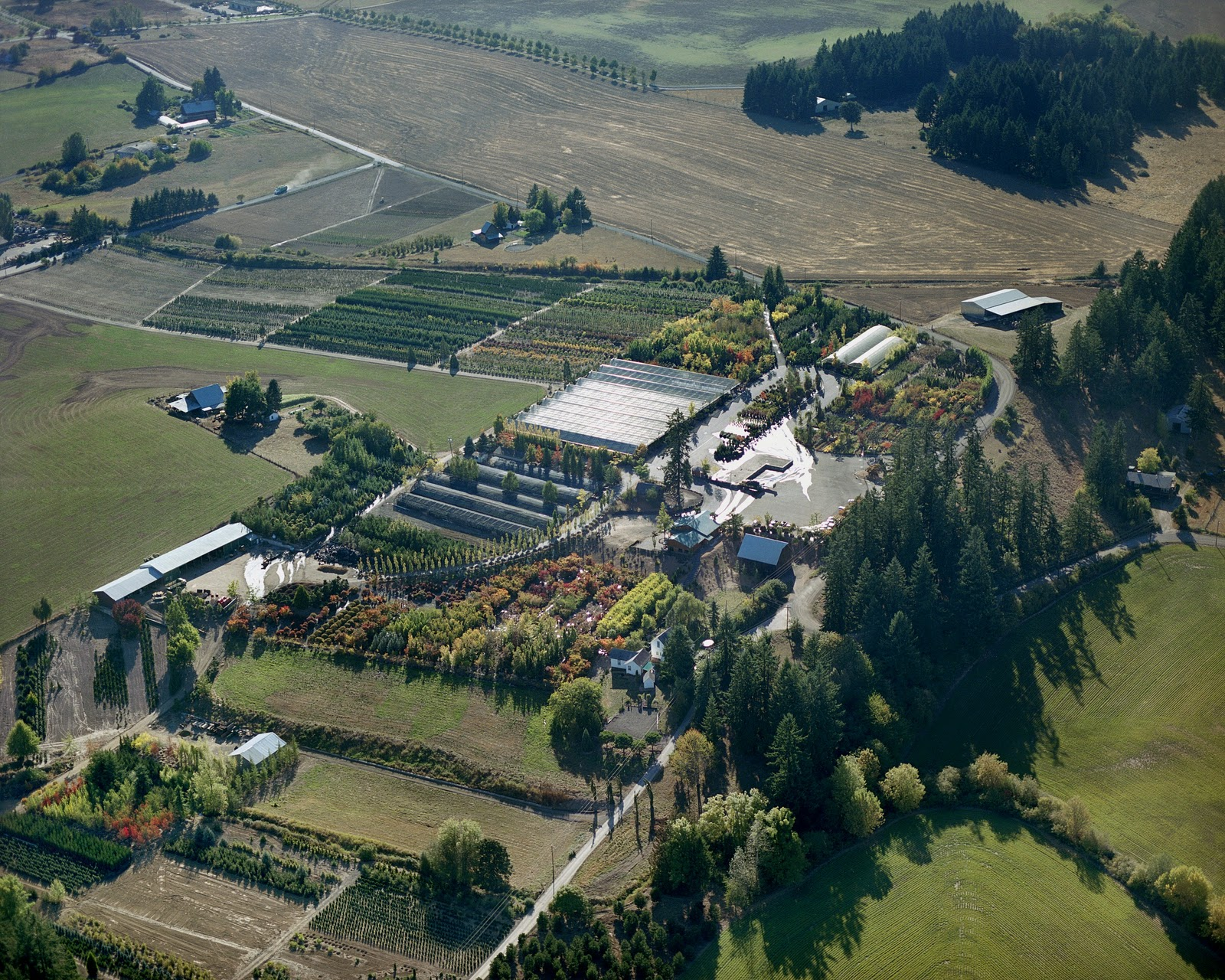Aerial View Of Cascadian Nurseries