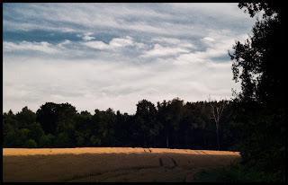 Krajobraz. fot. Łukasz Cyrus