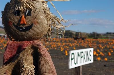 scarecrow ideas