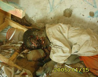 [DARFUR.CHILD.MURDERED]