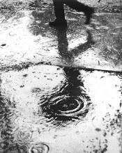 Tan solo quedara la lluvia