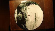 """Judy Dyble - Fragile, 7"""" pic disc"""