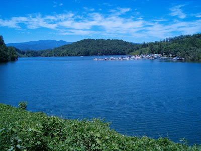 Life in the carolina mountains fontana lake for Fontana lake fishing