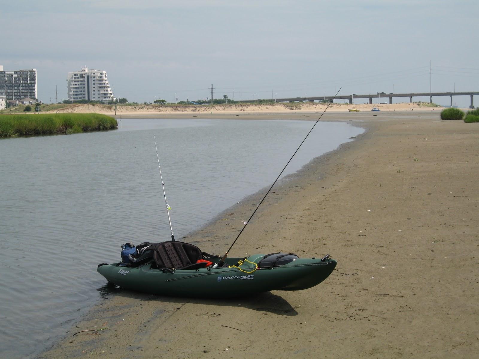 The bonefish flat january 2011 for Virginia saltwater fishing