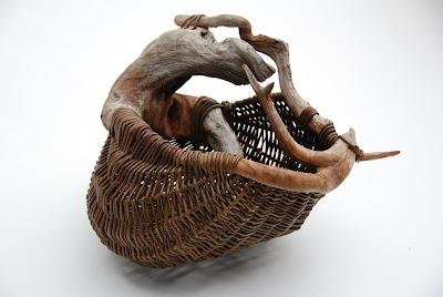 bluestem nursery willow basketry joe hogan ireland. Black Bedroom Furniture Sets. Home Design Ideas