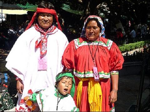 grupo indigena estado durango:
