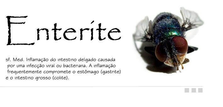 Enterite