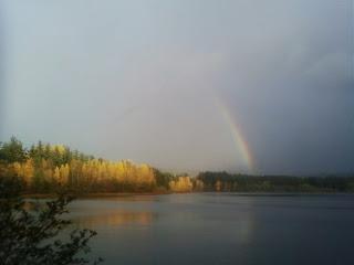 rainbows-n-suchlike