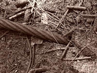 logging cable