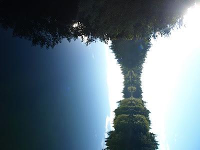 Reflection Pics