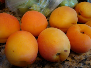 Apricots on countertop