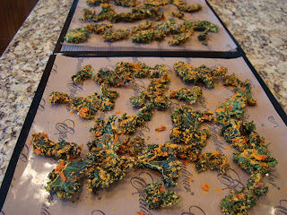 Finished Cheezy Kale Chips on dehydrator trays