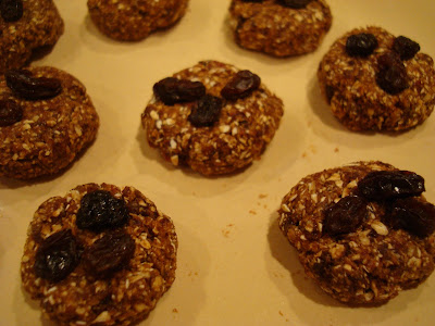 Plate full of High Raw Vegan Oatmeal Raisin Cookie Balls