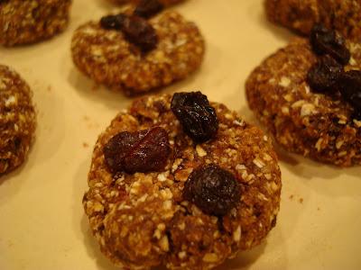 High Raw Vegan Oatmeal Raisin Cookie Balls