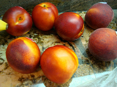 Fresh fruit on countertop