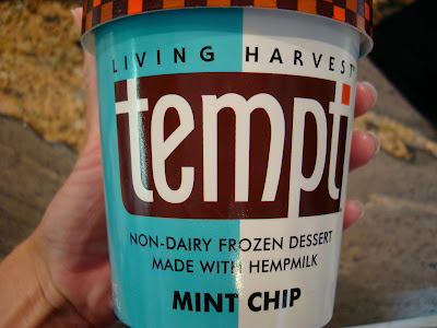 Tempt Hemp Milk Ice cream