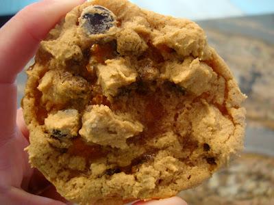 One Vegan GF Peanut Butter Caramel Chocolate Chip Cookie with Peanut Flour