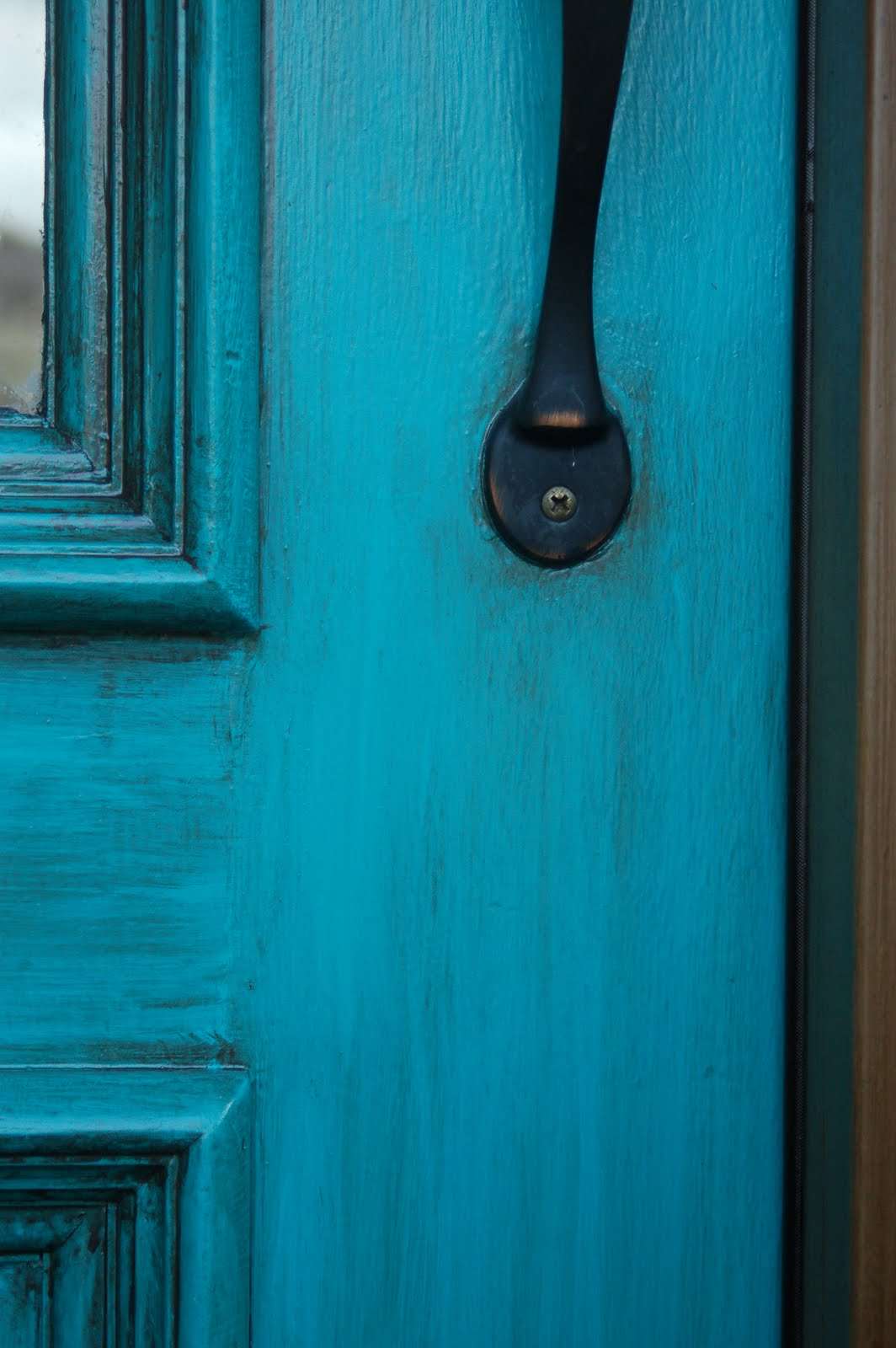 beyond the screen door turquoise front door