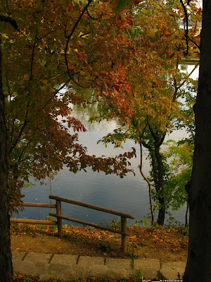 Toamna/Autumn/Herbst/Φθινόπωρο/Otoño/Ősz