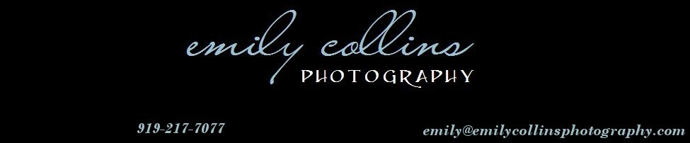 Emily Collins Photography, Inc. Blog
