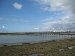 Puente sobre el Río San Pedro