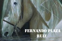 WEB:  FERNANDO PLAZA RUIZ