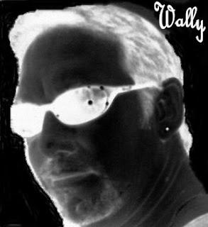 Wallycrawler