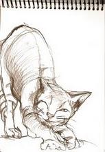 Miau por: Bárbara