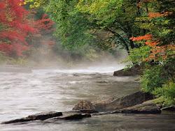 Viento en el río