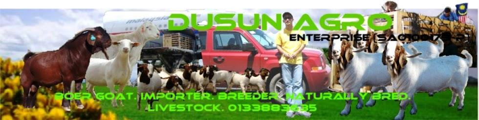 DUSUN AGRO enterprise (SA0100179-P)