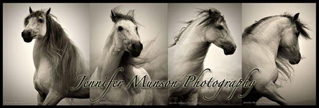 Jennifer Munson Photography