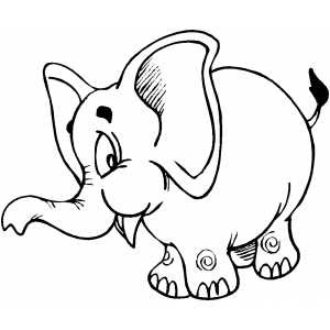 Free Printable Coloring Pages Elephant Creation