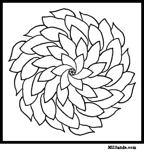 Fleurs Flowers Coloring Pages