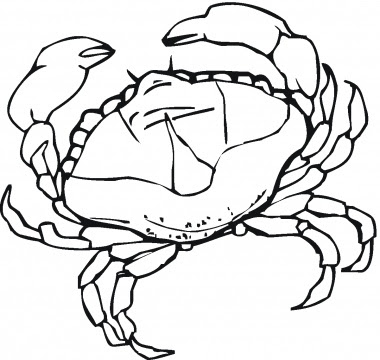 Simple Crab Coloring Pages