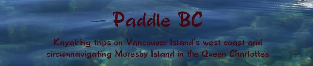 PaddleBC