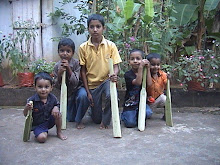 WHEN GET A CHANCE TO PLAY CRICKET