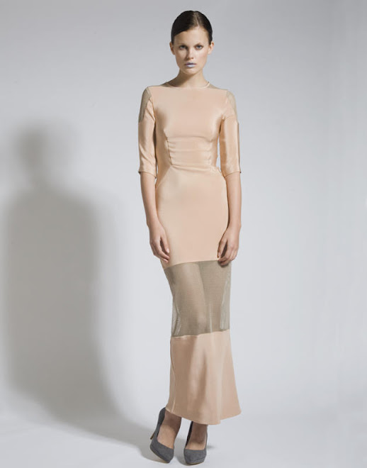 Nude Silk Dress with Net Inserts