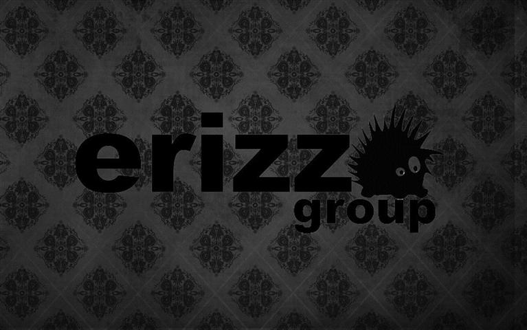 erizzo group