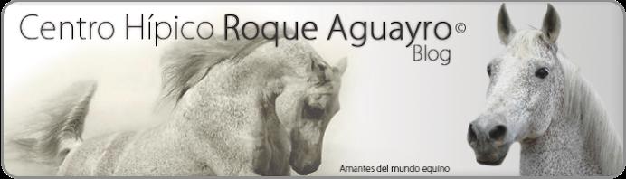 Centro Hípico Roque Aguayro