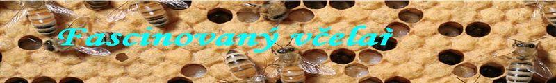 Fascinovaný včelař