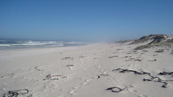 Plastics beach