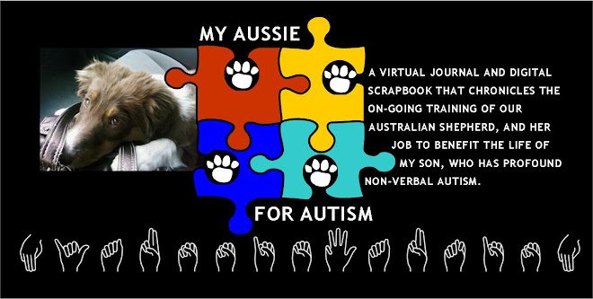 My Aussie for Autism