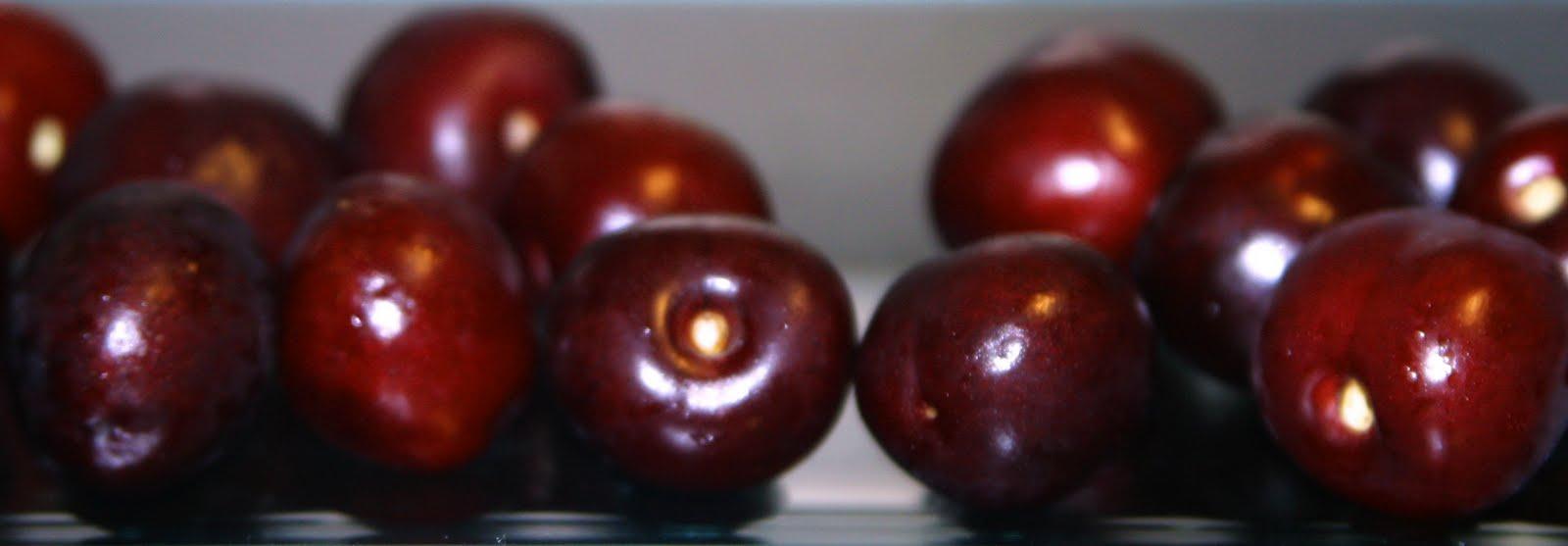 Espuma de calabacín aromatizada con hongos