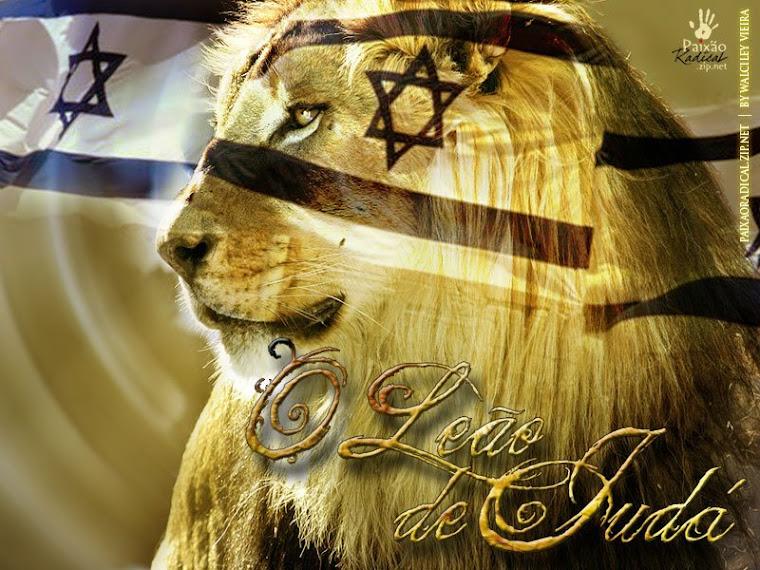 a geração do arrebatamento irá pra sempre morar com Cristo na nova Jerusalem.