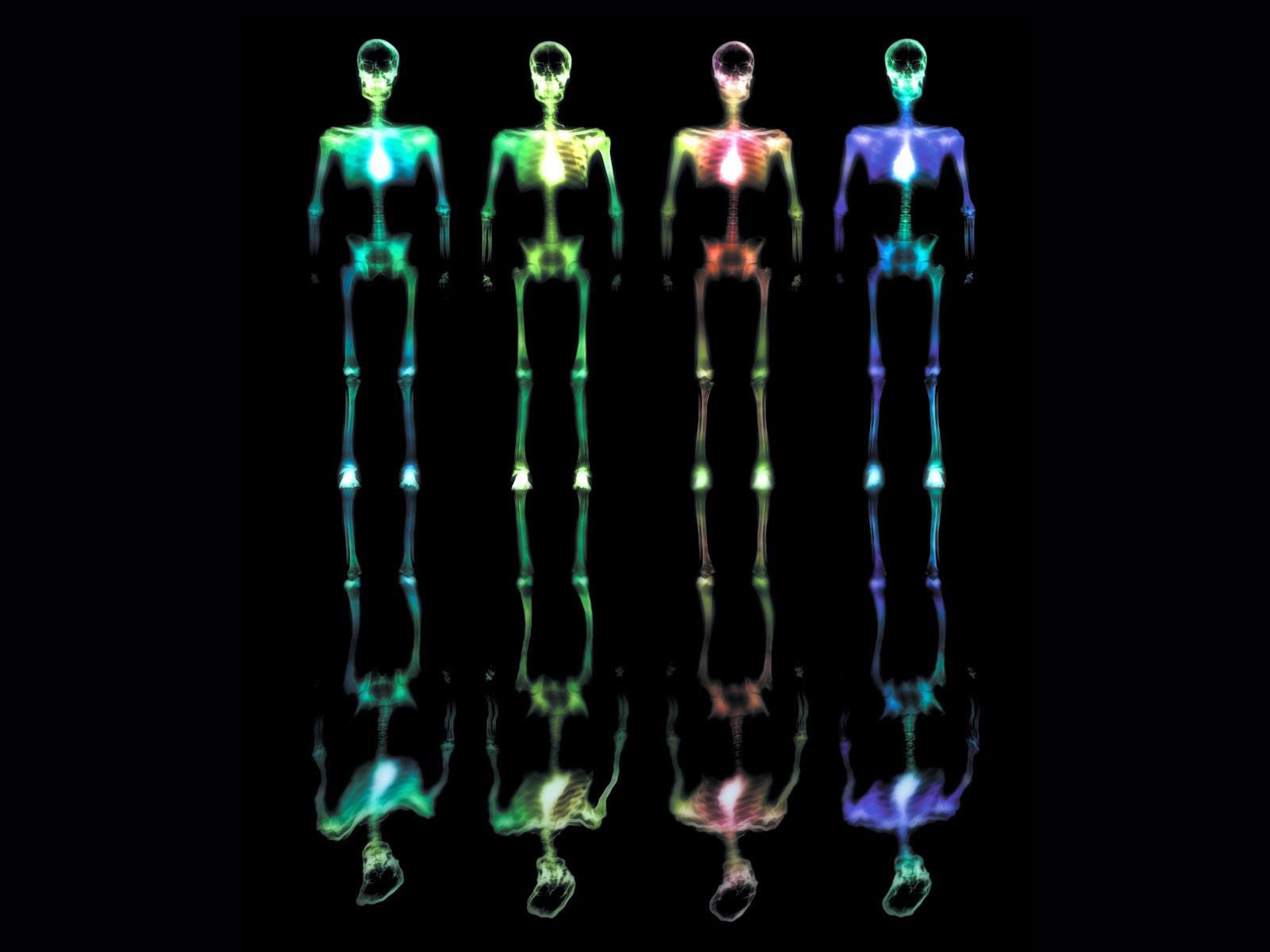 Lujoso Página De Esqueleto De Color Bosquejo - Enmarcado Para ...