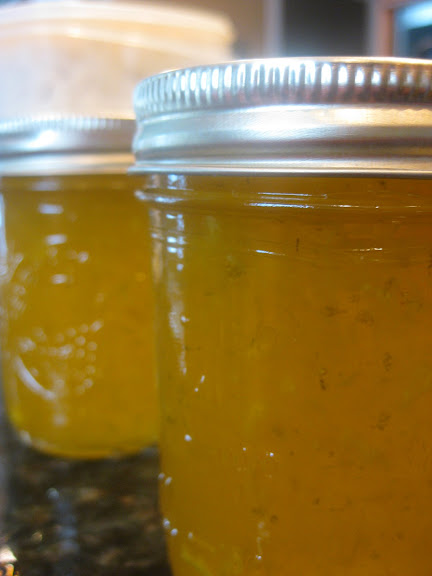 Mango Lime Jam - SheSimmers