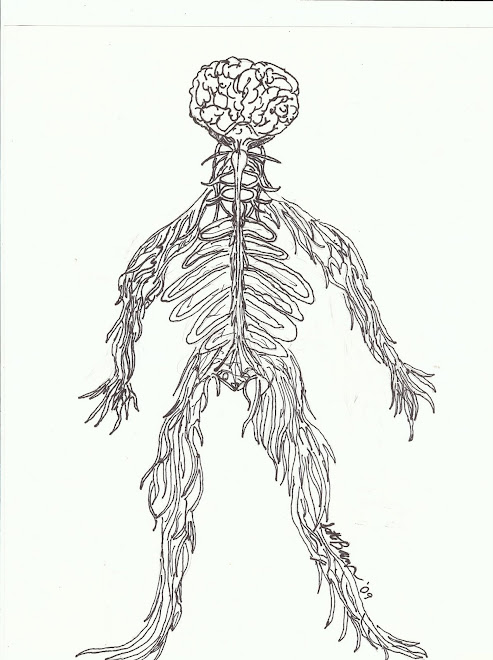 Nervous system by Scott barrows
