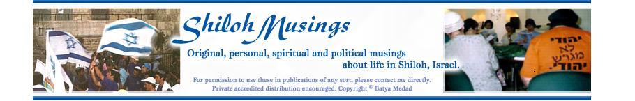 Shiloh Musings