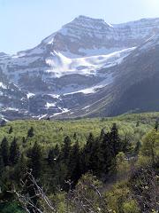 Mount Timpanogas